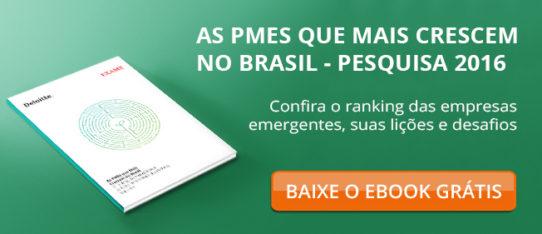 PMEs que mais crescem no Brasil